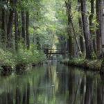 Visita a Spreewald