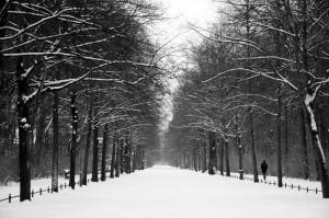 berlin-blanco-y-negro-6